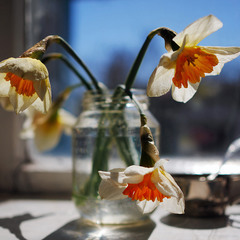 Весна...