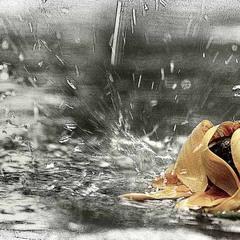 Блюз дождя