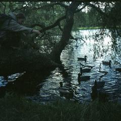 охота на уток)