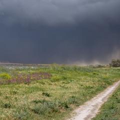 шторм вот-вот догонит