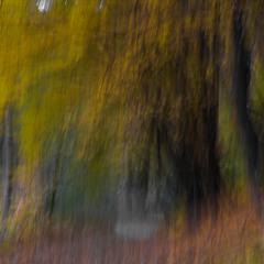 """""""Autumn @ online"""""""