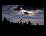 Селфи на закате