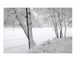 Про зиму