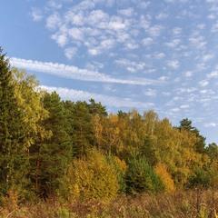 Осенняя диагональ.