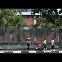 В дождливом Сингапуре