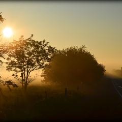 Туманный рассвет по дороге на Одессу