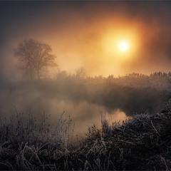 Рассвет на выжженной земле