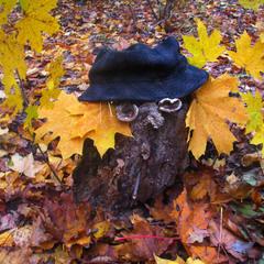 Хранитель леса...