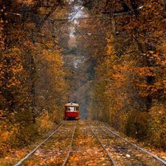 Пущинский трамвай и осень