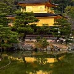 золотой павильон