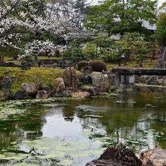 Сад  замка Ниджё