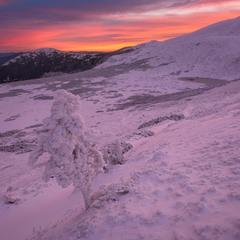 Морозное дыхание Черногоры #2