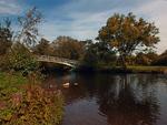 Горбатый мостик