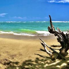 Берег Індійського океану.