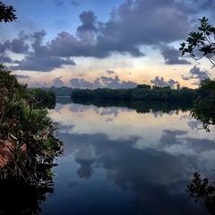 Озеро де живе крокодил.