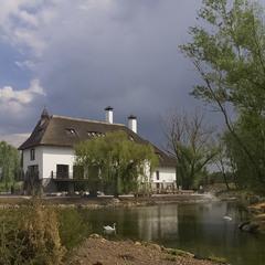 Весенний сюжет с облаками и лебедями