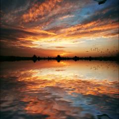 My Wonderful Sunset