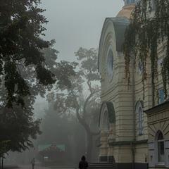 Мовчання в тумані...