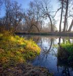 Солнечное утро на реке