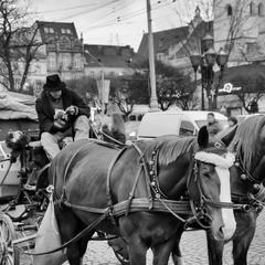 Ямщик, не гони лошадей... :-)