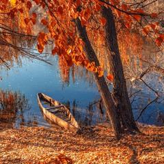 В красках листвы