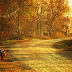 Осінніми дорогами