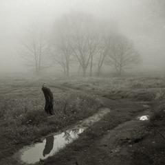 Туманы и Дожди