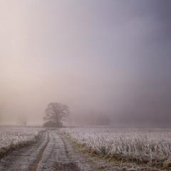 Белой тропой - домой
