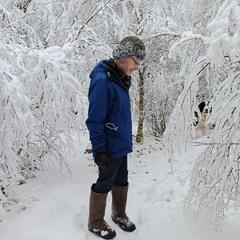 Winter camouflage, Halland, Sweden