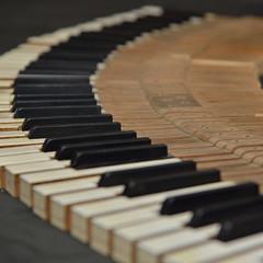Клавиши - это еще не ноты, это еще не звуки... только клавиши...