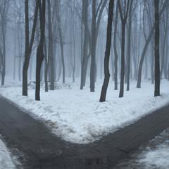 За туманом нічого не видно...
