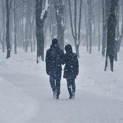 Последний снегопад этой зимы... ПОСЛЕДНИЙ?!