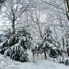 Есть два лика у зимы...