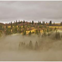 Підйомником крізь туман