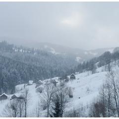 Останній подих зими у Карпатах