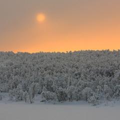 Красочная зима