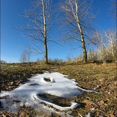 Последний Дракоша зимы