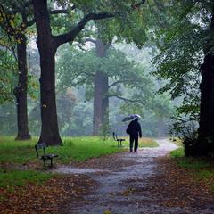 Дождливый сентябрь
