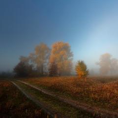 Осенний сон.