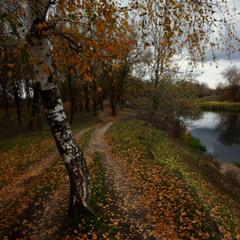 Осень милая вдруг погрустнела.