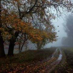 Ходит осень по дорожке.