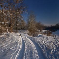 По зимним дорожкам.