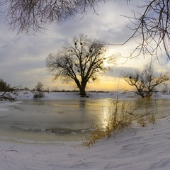 frosty evening