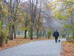 Прогулки осенним парком.