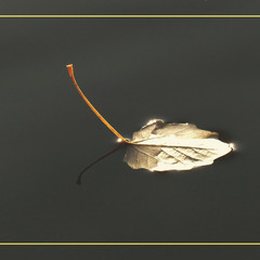 Осенний кораблик.