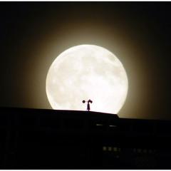 Ночь, луна и анемометр.