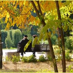 Осень пришла в парк.