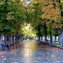 На Приморский бульвар пришла осень.