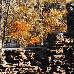 Осень пришла в старый парк