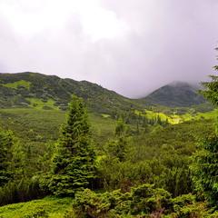 Тумани Чорногорського хребта